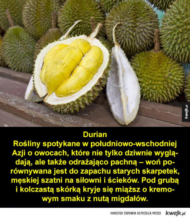 Dziwne i niecodzienne owoce z całego świata