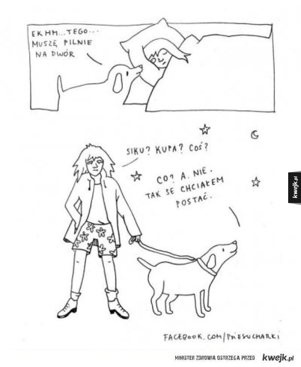 Z psami tak to bywa