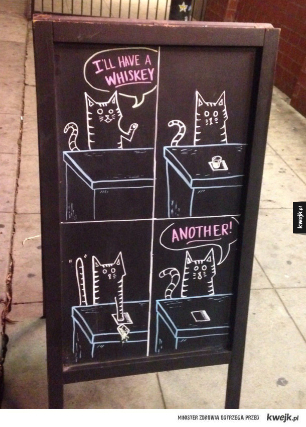 kot ma whisky