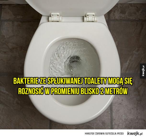 Porcja ciekawostek dotyczących higieny (lub jej braku)