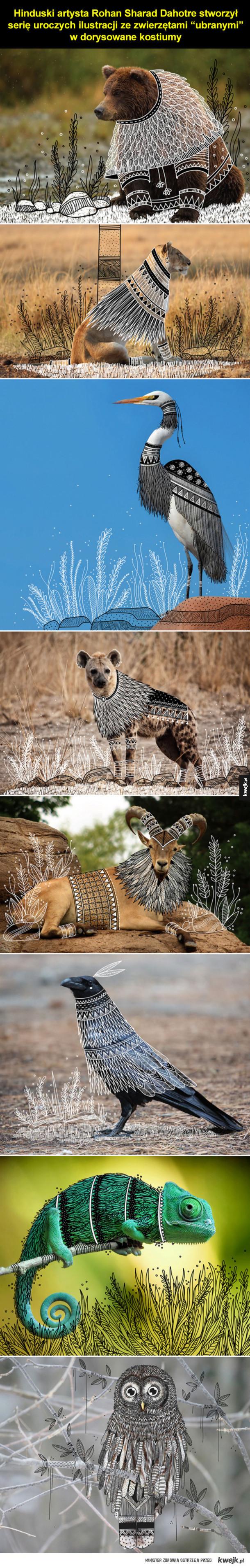 Zwierzaki w sweterkach