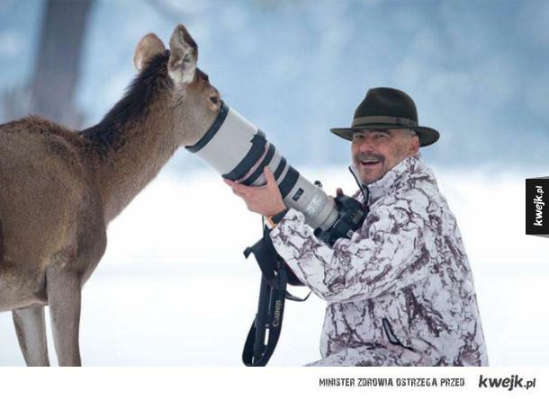 Z kamerą wśród zwierząt