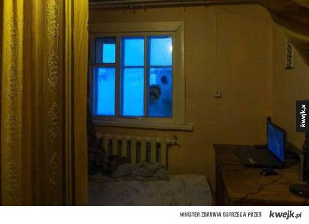 Tymczasem gdzieś w mroźnej Rosji