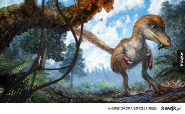 Pierzasty dinozaur