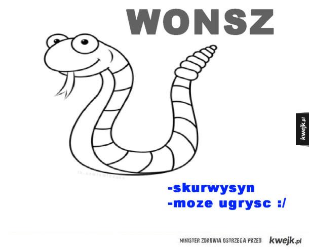Wonsz :/