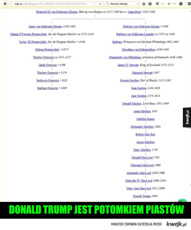 Ciekawostka na dziś - Trump jest potomkiem piastów
