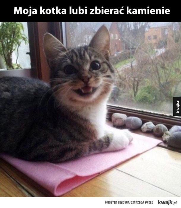 jaka szczęśliwa kotka