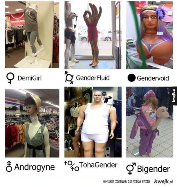 Oficjalny spis wszystkich płci