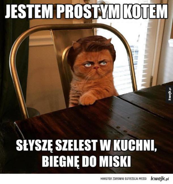 prosty koteł