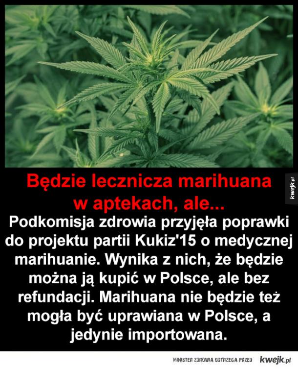 Lecznicza marihuana legalna w Polsce, ale...