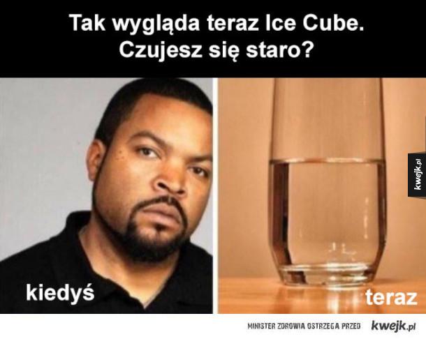 tak wygląda ice cube