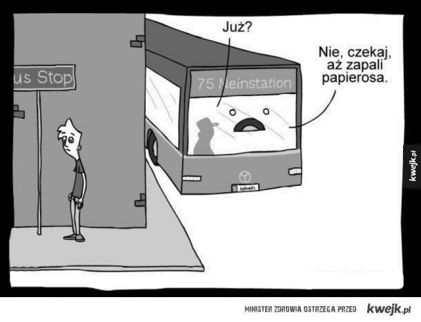 autobusy takie są