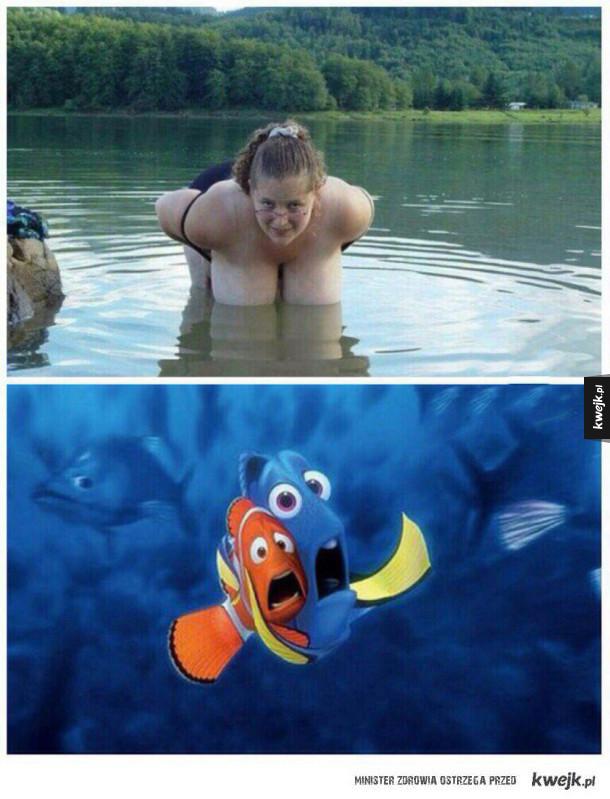 przestraszone rybki