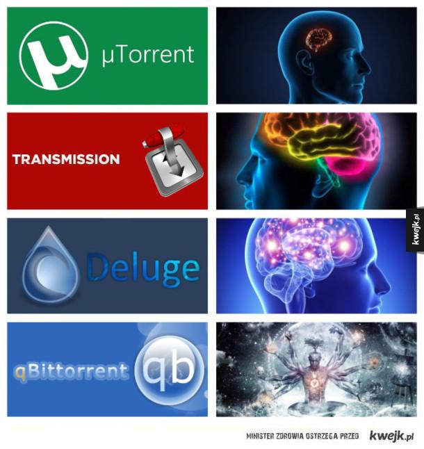 Różnice w inteligencji