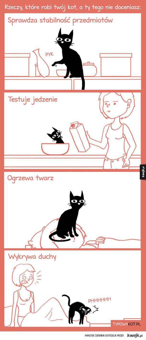 Rzeczy, które robi twój kot