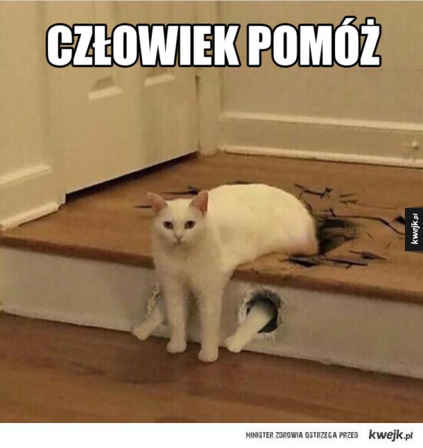 Koteł utknął