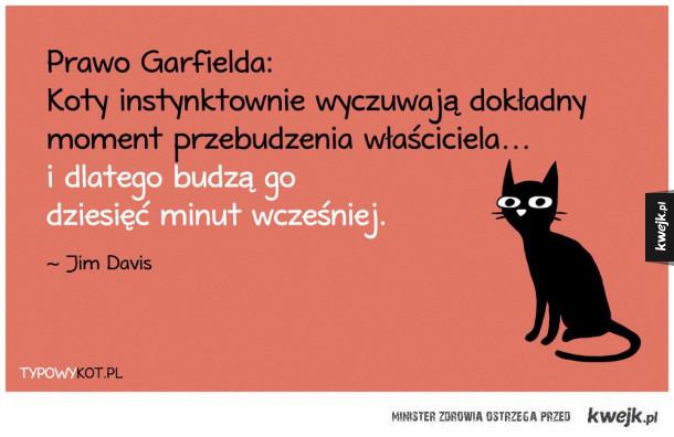 Prawo Garfielda
