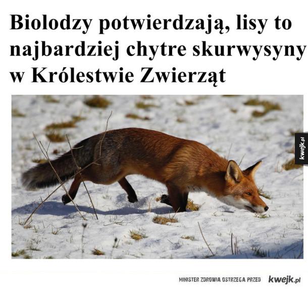 Biolodzy potwierdzają