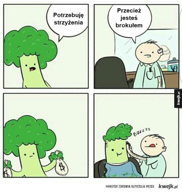 ZIomek brokuł