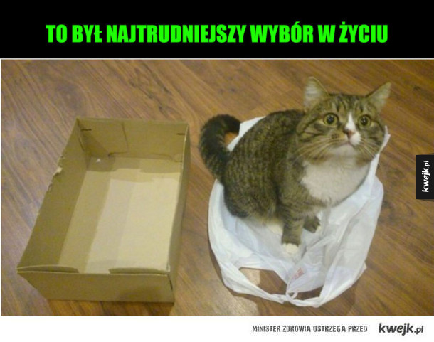 siatka vs pudełko