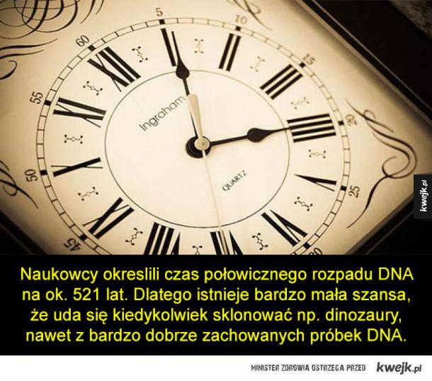 Kilka ciekawostek związanych z DNA