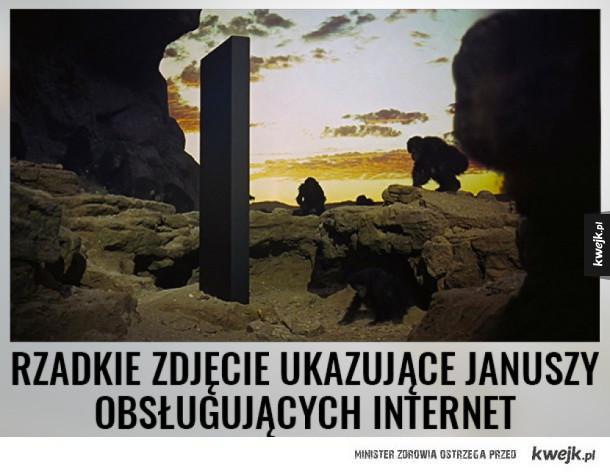 Janusze kontra Internet