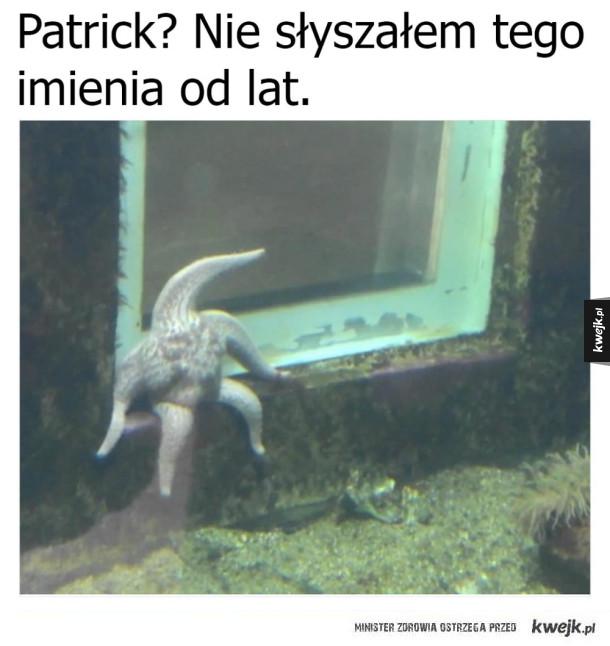 Patrick się trochę zmienił