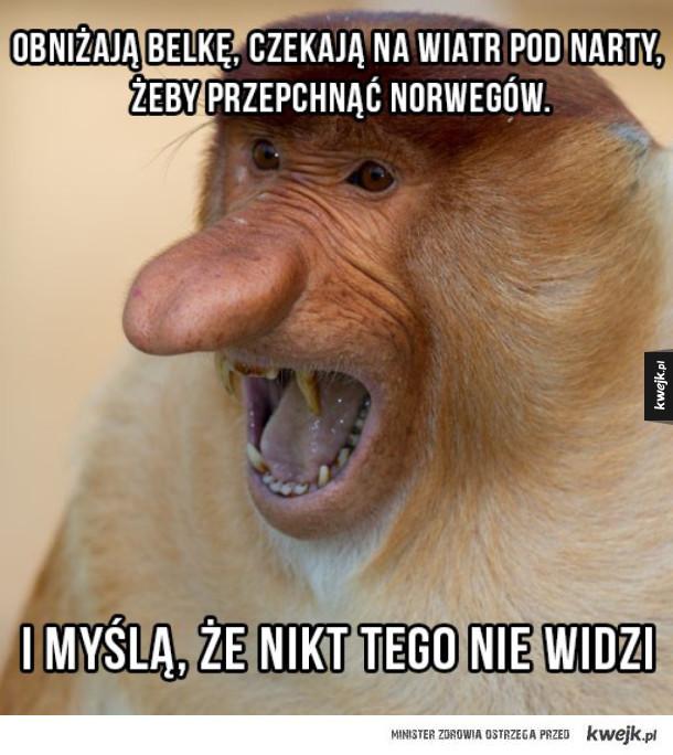 Polski kibic skoków