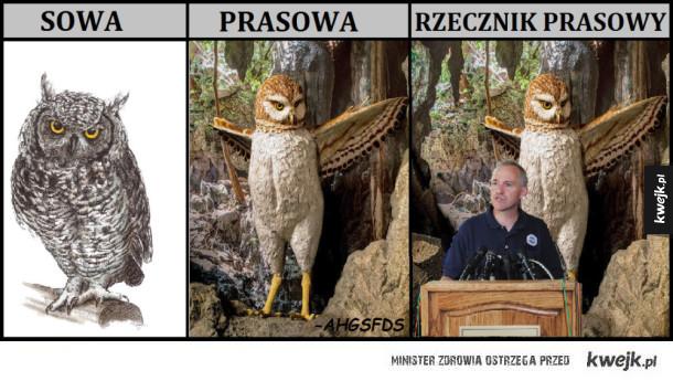 Pra-sowa