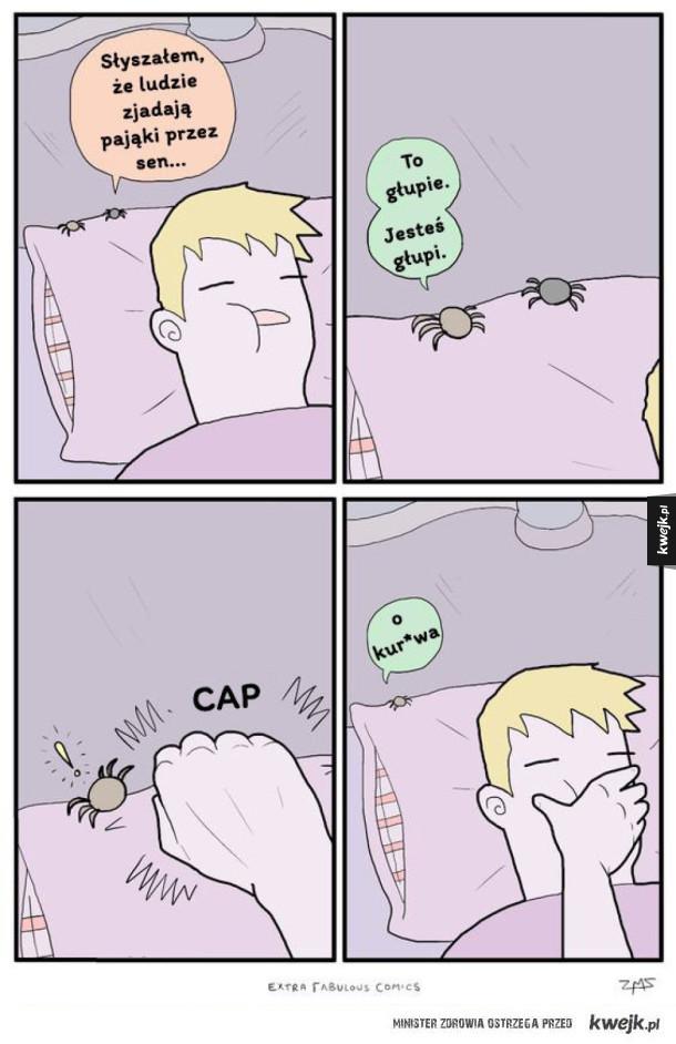 Ludzie zjadają pająki przez sen