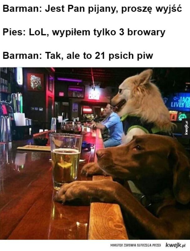 Psi przelicznik