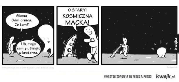 Ośmiornica w kosmosie