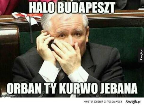 Jarosław dzwoni