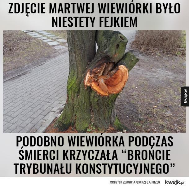 #WiewiórkaGate