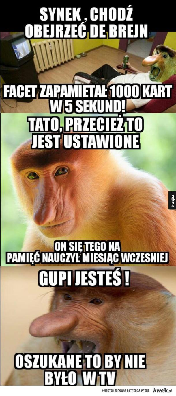 Typowy Janusz Ministerstwo śmiesznych Obrazków Kwejkpl