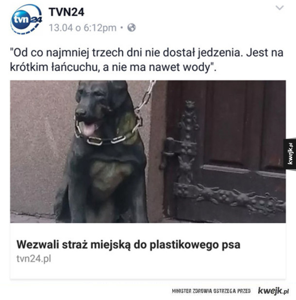 Smutna historia psa