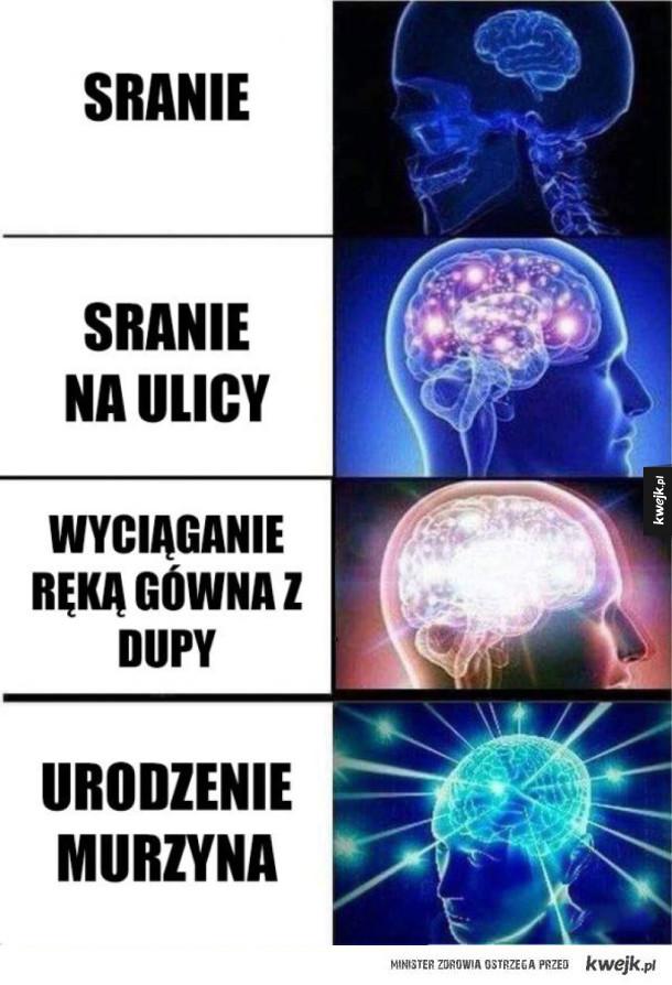 mózg roz*ebany