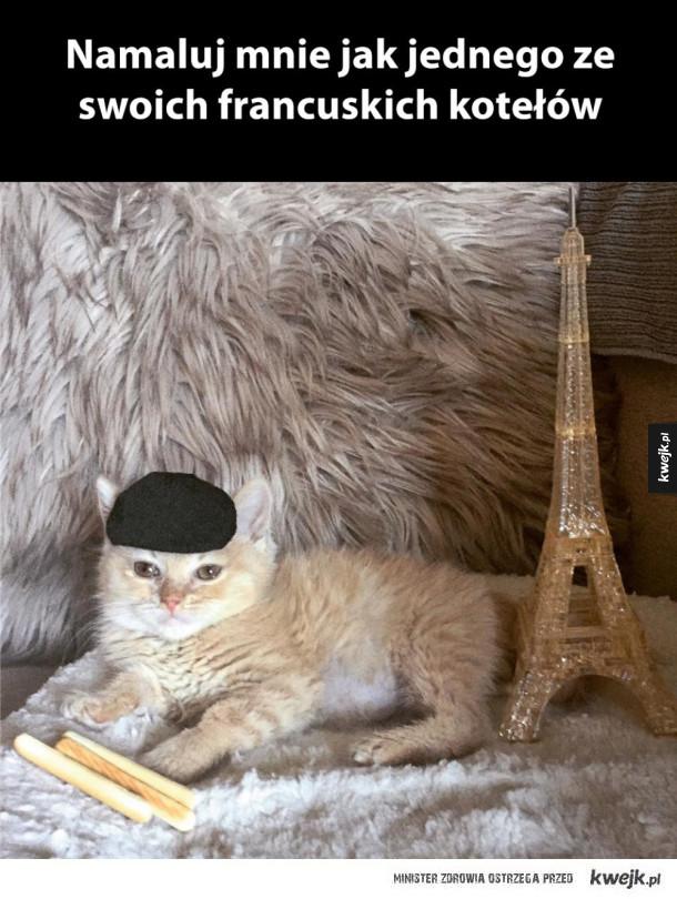 francuski koteł