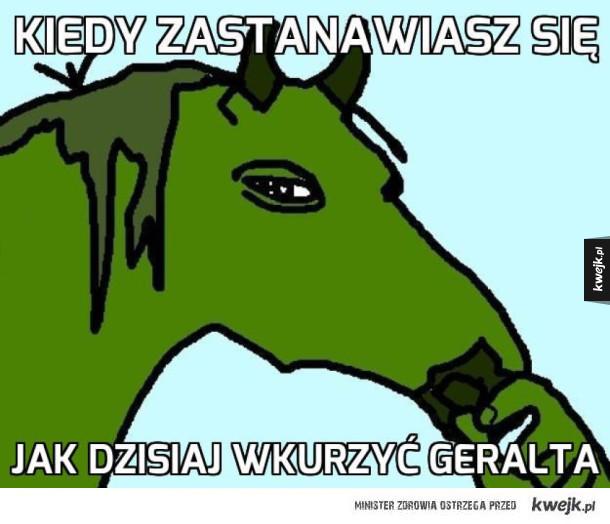 Wiedźmińskie memy