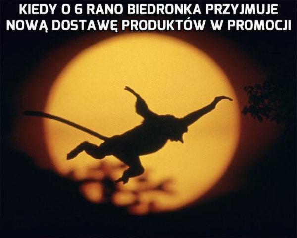 Powstanie Janusza