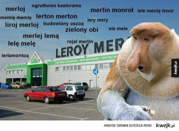 Liroj Merlin