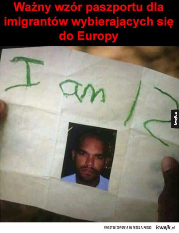 wzór paszportu