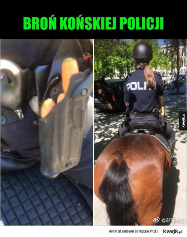 policjantka i koń