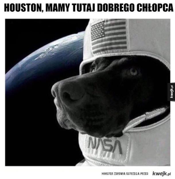 Houston, nie mamy problemu
