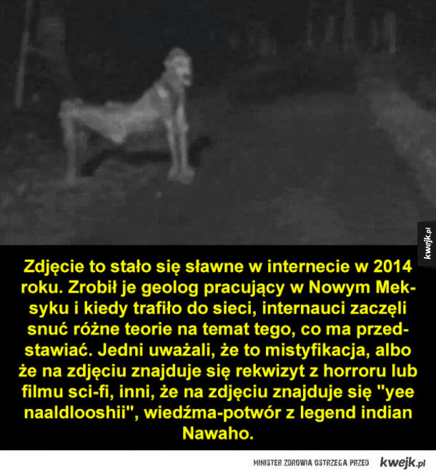 """Dziwne zdjęcia i """"dowody"""" na istnienie duchów i potworów"""