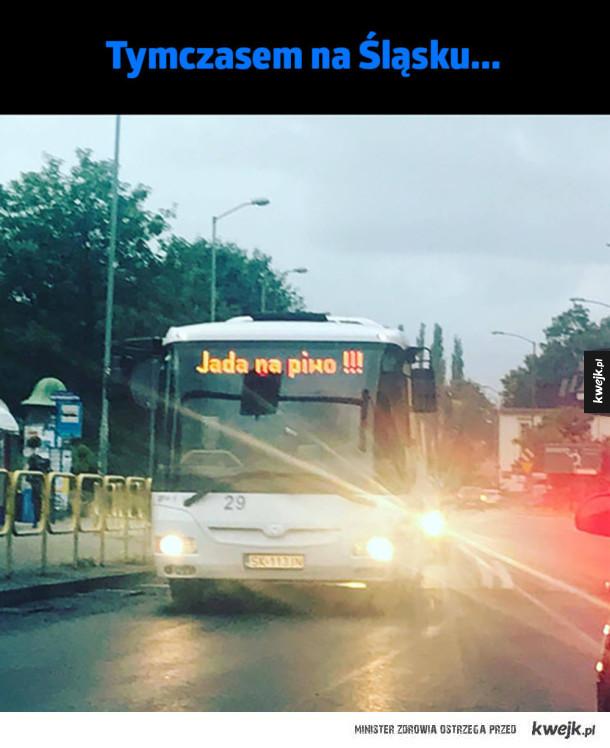 Najlepszy bus w mieście