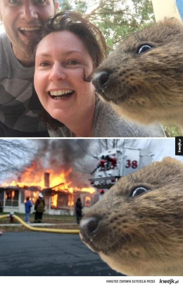 Najlepsze wygrane w bitwach na Photoshopa