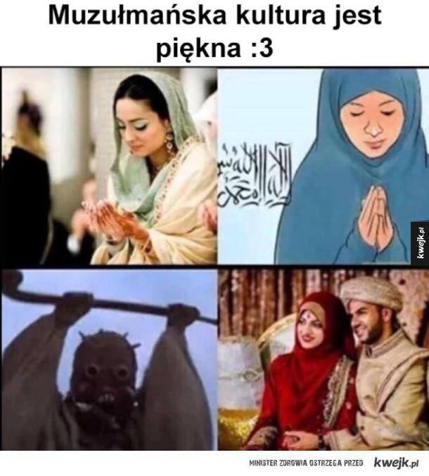 muzułmańska kultura