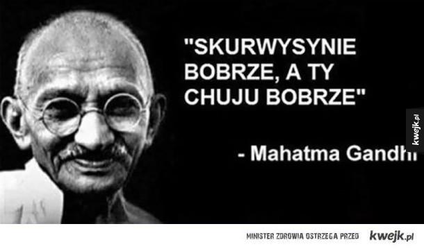mądry cytat