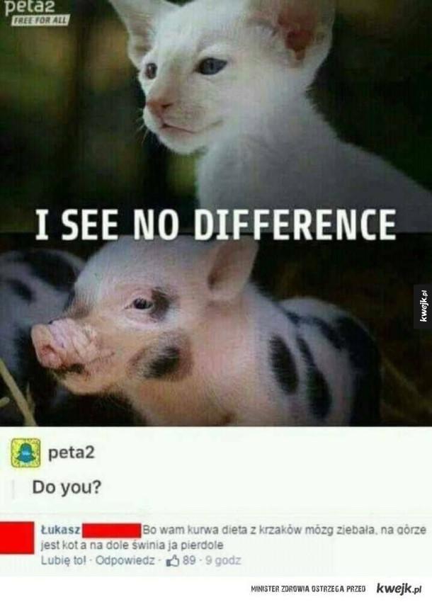 Peta nie odróżnia zwierząt